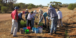 Friends of Riverland Parks volunteers tree planting (Photo: DENR).