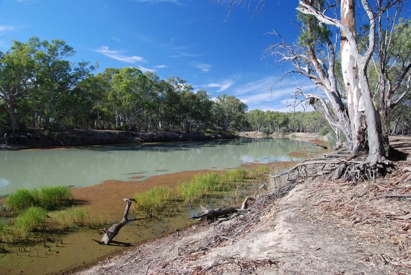 Katarapko Creek