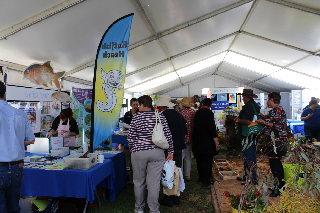Visitors lining up to taste freshly cooked carp at the Katfish Reach exhibition (Photo: DEWNR).